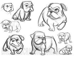 cute bulldog cartoon drawing sketch coloring page baby animals