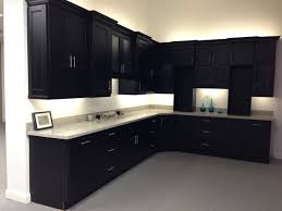 amazing samples of kitchen cabinets free samples kitchen cabinets