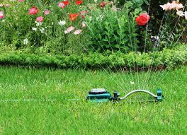 gardening basics 11 age old tips to ignore completely bob vila