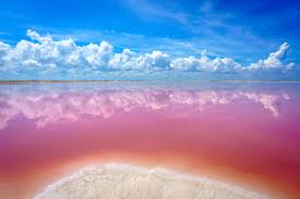 the unbelievable pink lakes of las coloradas in mexico u2022 expert