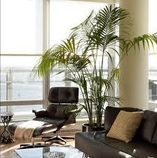 92 best artificial plants images on pinterest artificial plants
