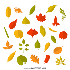 thanksgiving leaves clipart autumn leaves circle frame vector download