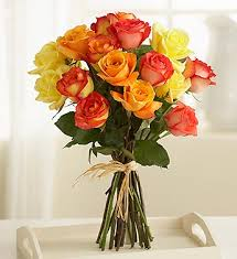 multicolored roses multicolored roses 15 stems flower shop florist in rapid