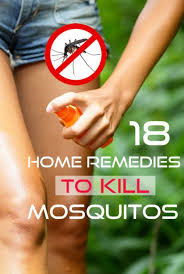 Best Way To Get Rid Of Mosquitoes In Your Backyard 18 Proven Home Remedies To Get Rid Of Mosquitoes