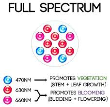 best led grow lights for marijuana led grow l amazon amazing marijuana grow lights for led grow