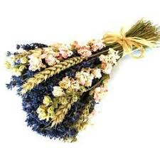 Dried Flower Arrangements Dried Flower Bouquets In Pune Maharashtra Manufacturers