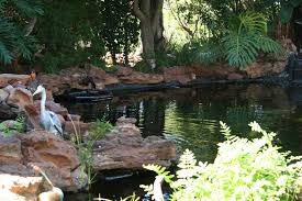 water features fish ponds waterfalls and flexible pond liner