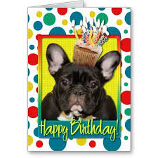 23 best bulldog birthday card images on
