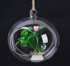hanging air plant terrarium moss succulent planter wedding candles