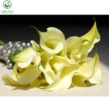 Calla Lily Home Decor by Compare Prices On Painting Calla Lilies Online Shopping Buy Low