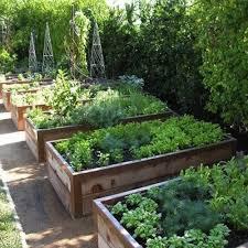 see how avid garden lovers created their urban vegetable garden