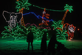 Zoo Lights Address by Makecalgary Blog Archive Lions And Tigers And Lights Oh My