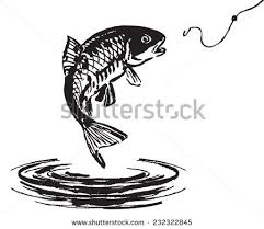 jumping fish stock images royalty free images u0026 vectors