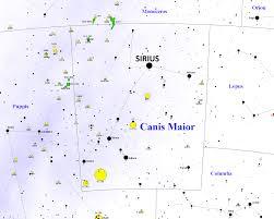 big dog constellation canis major wallskid