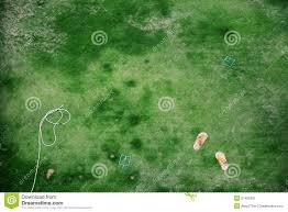 top view of green backyard with flip flop relax concept stock