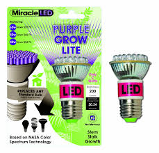 light bulbs where to buy light bulbs astonishing ligh bulb