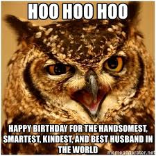 Owl Birthday Meme - happy birthday owl meme owl puns kappit who wouldn t find a