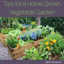 100 how to start a flower bed wildflower garden design