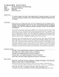 Entry Level Java Developer Resume Examples Skills Needed To Be Resume Software Engineer Resume