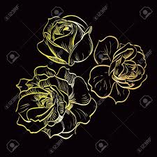 Gold Rose Gold Rose On Black Background Royalty Free Cliparts Vectors And