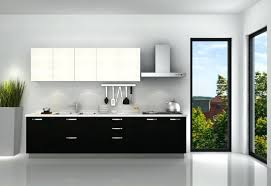 Painting High Gloss Kitchen Cabinets High Gloss Lacquer Kitchen Cabinets U2013 Truequedigital Info