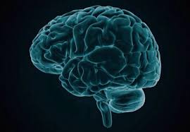 Antidepressants And Hair Loss Depression And Technology U2013 Kalekye Health