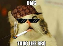 Thuglife Meme - thug life meme best list of gangsta memes and funny thug life