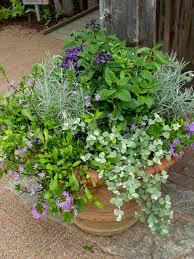 8 creative ways to pot garden garden housecalls