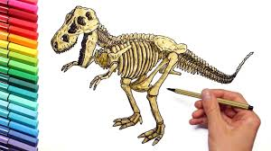 dinosaur skeleton color pages for childrens drawing and coloring