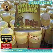 Minyak Bulus Asli Papua minyak bulus bisa memperbesar payudara jual minyak bulus asli papua