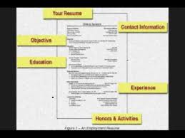 How To Create A Resume Without Job Experience by How To Write A Resume With No Job Experience Youtube