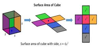 how calculate the surface area of a cube assignment point