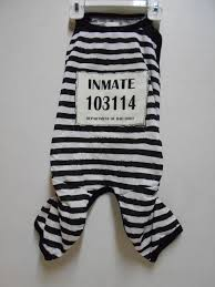 Inmate Costume The 25 Best Inmate Costume Ideas On Pinterest Federal Prison