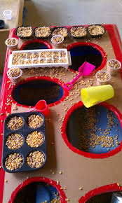 thanksgiving sensory table ideas 47 best sensory tub ideas images on pinterest sensory play