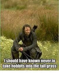 Grass Memes - 25 best memes about tall grass tall grass memes