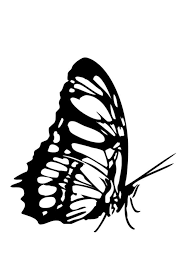 butterfly coloring pages printable butterfly coloring pages hellokids com