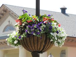 flower baskets file gloucester va flower basket by chuck thompson of ttc media