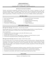 Sales Resume Sample Download How To Write A Professional Resume Simple Sample Essay