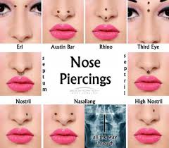 all nose rings images 10 different types of nose piercings with images trulygeeky jpg