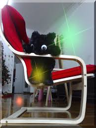 Ikea Pello Chair Ikea Fun Pello Chair My Little Cat U0027s New Chair 为了欢迎大黑猫