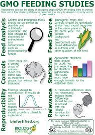 good experimental design gmo feeding studies biology fortified inc