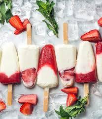 la cuisine des ices toutes nos recettes de glaces à faire soi même sorbet food and
