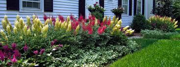Landscape Design Pictures by Ornamental Plantings 1 Clc Landscape Design