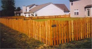 backyard fences for dogs home outdoor decoration