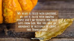 my is filled with gratitude my is filled with amazing