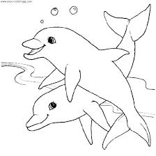 118 dessins de coloriage dauphin à imprimer