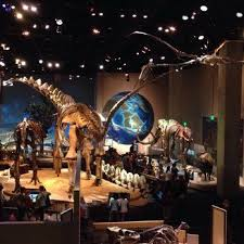 perot museum of nature and science museums dallas tx