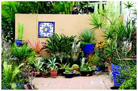 garden wall plants minimalist succulent garden decoration for outdoor living space