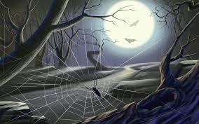 spider web on halloween walldevil