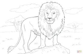 free printable lion guard coloring pages king sheets calm